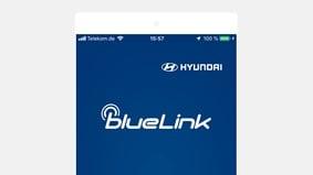 BlueLink®-appen